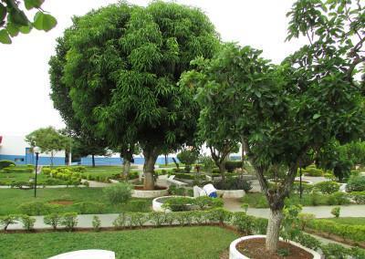 Casa  is set in a beautiful garden.