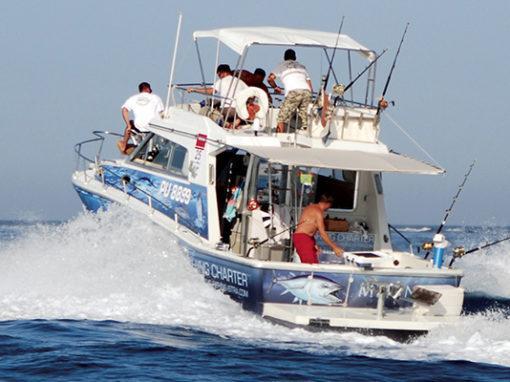 Spletno mesto Big game fishing Istra