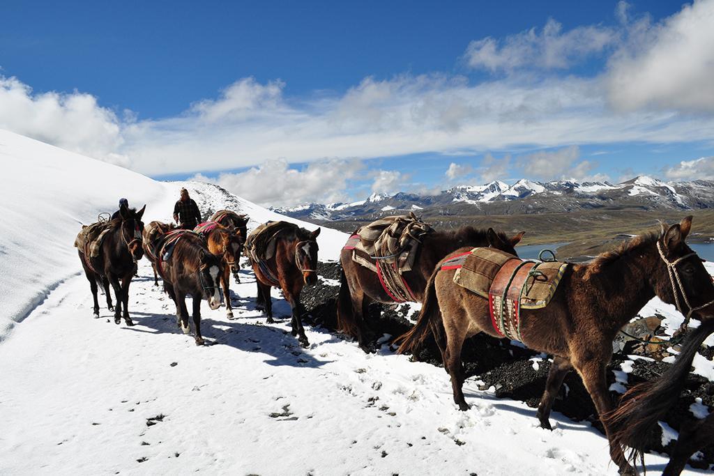 Bolivija, pot kondorja