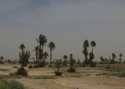maroko (25)