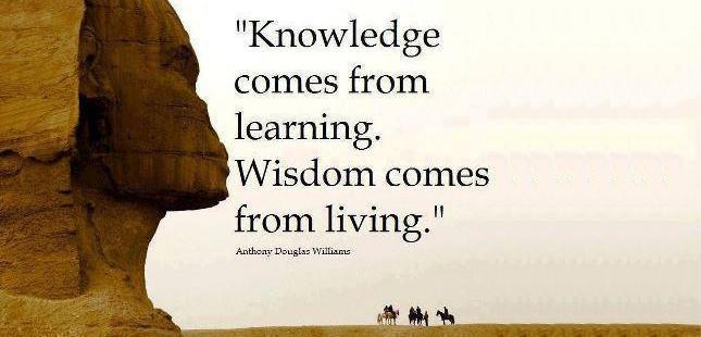Uči se, delaj in nato bodi